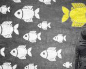 Mehrere weiße und ein großer gelber Fisch vor schwarzem Hintergrund.
